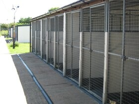Our Kennels